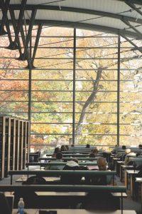 Bascom Hill in autumn through Law Library windows